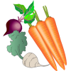 Tuber & tuberous plants
