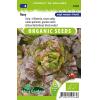 SL0164 - Lettuce Roxy