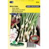SL0536 - Onion buncing, White Lisbon seedtape
