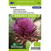 SL0591 - Cardoon Artichoke Thislte, Scottish Thistle