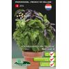 SL2014 - Fuseables Basilicum Try Basil (multi-seed pil)