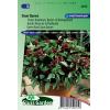 SL2015 - Basil, Sweet Siam Queen (Ocimum Basilicum)